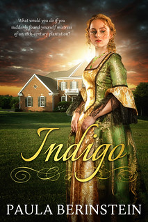 Indigo by Paula Berinstein